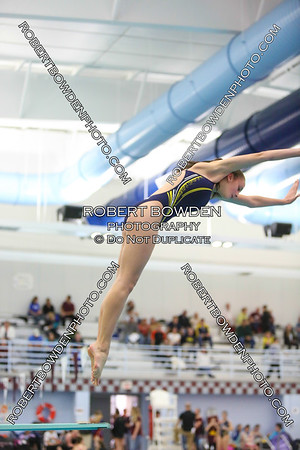 SEC White Championship - Diving 8 Nov 2014