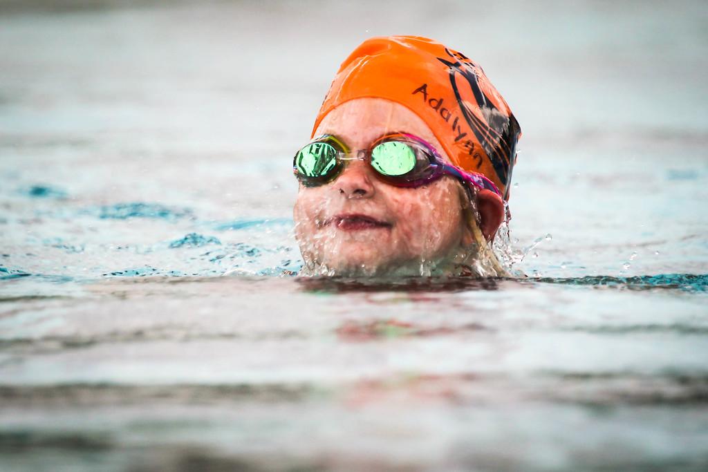 IMAGE: https://photos.smugmug.com/Sports/Swimming/Seals-Action-Shots-Full-Size/i-XHRbM9r/0/de966d38/XL/A73X7852-XL.jpg