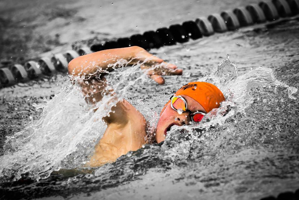 IMAGE: https://photos.smugmug.com/Sports/Swimming/Seals-Action-Shots-Full-Size/i-rJ86SWL/0/8bf37034/XL/A73X8106-2-XL.jpg