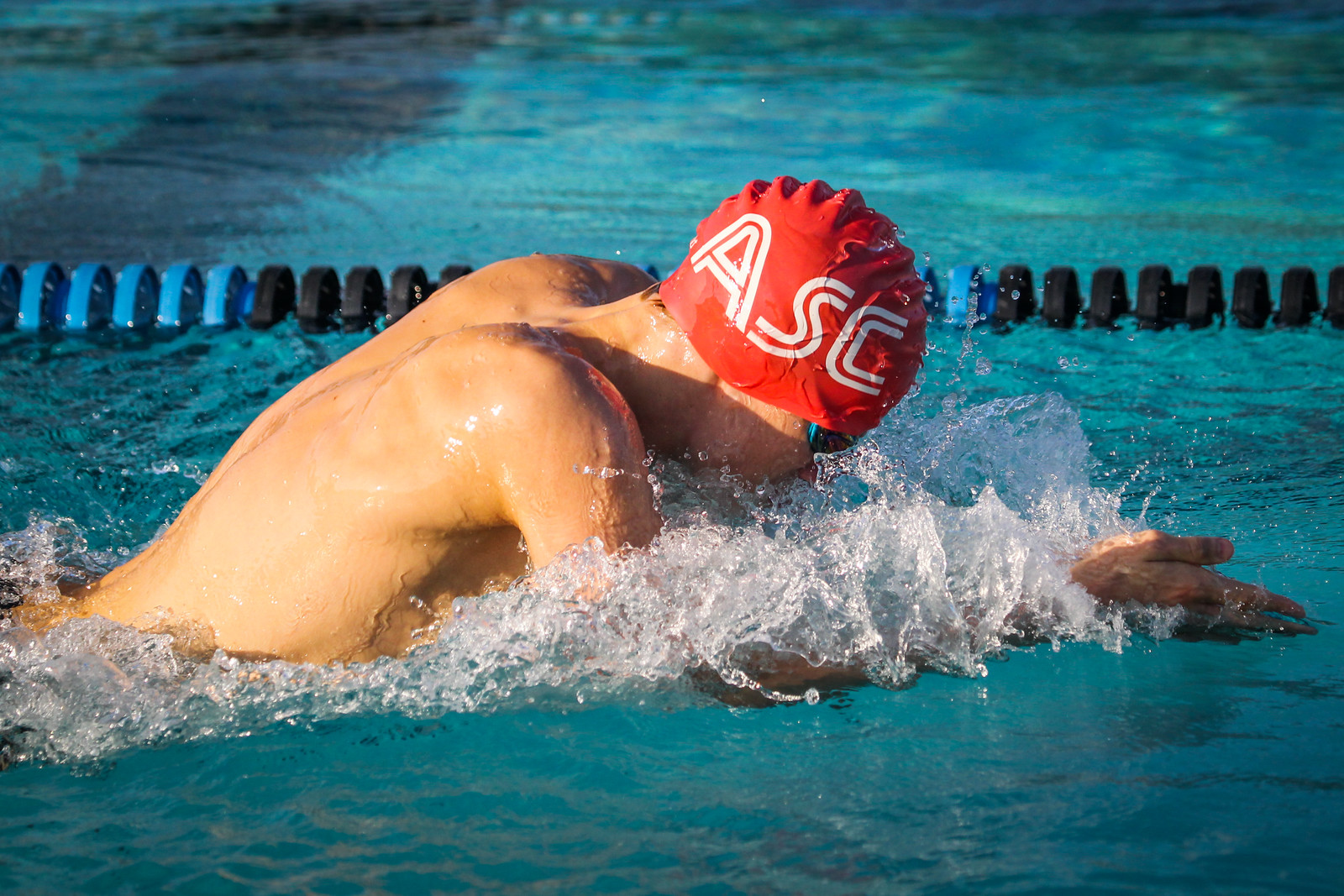 IMAGE: https://photos.smugmug.com/Sports/Swimming/Seals-Photos-2019/Armstrong-Walter/i-G7B55qM/1/7a85c64f/X3/A73X1346-X3.jpg