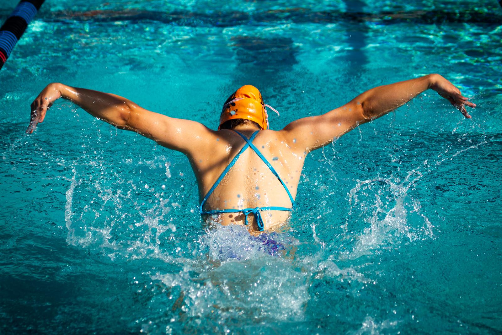 IMAGE: https://photos.smugmug.com/Sports/Swimming/Seals-Photos-2019/Deithloff-Avery/i-dd4zF7P/1/2cbf9744/X3/A73X9829-X3.jpg