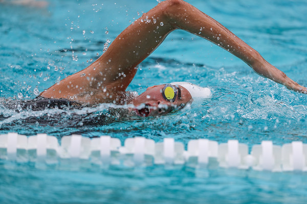 Ransom Everglades Boys and Girls Swimming