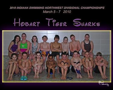 Hobart Tiger Sharks STATE Team practice