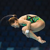FINA/Midea Diving World Series, Dubai, UAE