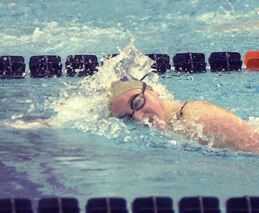 Warrior Run senior Katie Waldron became her school's only PIAA swimming champion in 2004 when she won the 500 freestyle as a junior. Waldron won the title by covering 20 laps of the pool in 5:06.37.