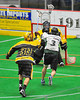 Vermont Voyageurs Brandon Dube (3) drives to the net against the Syracuse Stingers in Professional Box Lacrosse at the War Memorial Arena in Syracuse, New York on Sunday, April 13, 2014. Vermont won 19-12.
