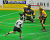 Vermont Voyageurs Marty Vanzo (8) shoots and scores on Syracuse Stingers goalie Matt Ural (30) in Professional Box Lacrosse at the War Memorial Arena in Syracuse, New York on Sunday, April 13, 2014. Vermont won 19-12.