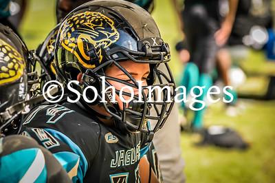 Jaguars 2016