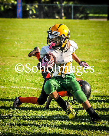 Packers PeeWee 2016