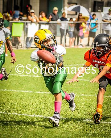 Packers Super Midgets 2016