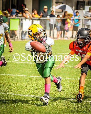Packers Super Midgets 2016