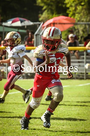 South Tampa 49er's 2016