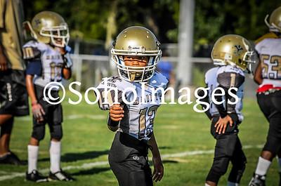 PeeWee Saints  2016