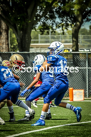 Westchase Colts 2016