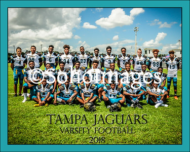 Jaguars 2018
