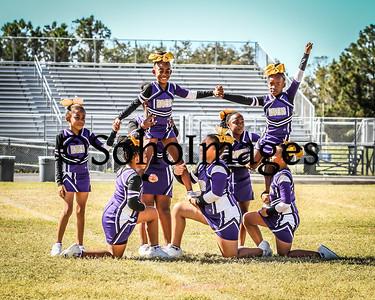 PeeWee Cheer 2017