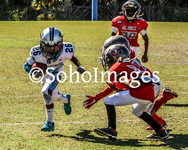 Playoffs Panthers Vs. Jr. Bucs PeeWee 2017