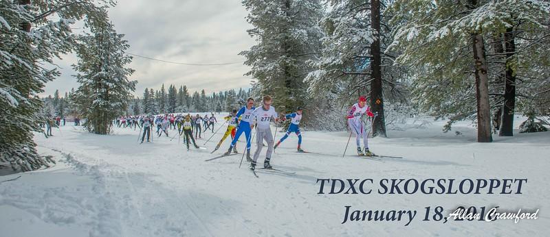 TDXC Skoggsloppet 2016