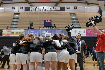THS Girls Varsity BB vs Sheldon - Playoffs Quarterfinal