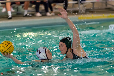 THS Girls Water Polo vs Forest Grove