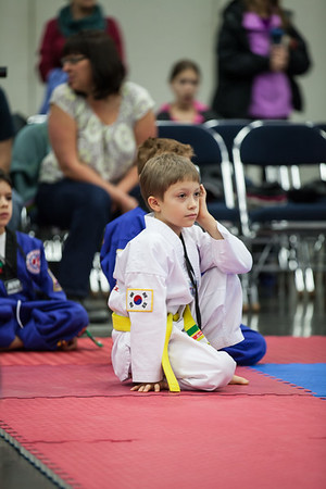 2013 NW Open Martial Arts Festival - November 16, 2013