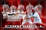 Baseball-Tribute