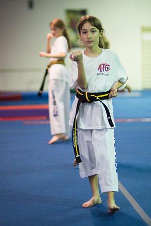 Taekwondo-4514