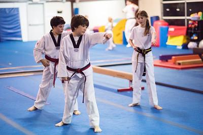 Taekwondo-4515