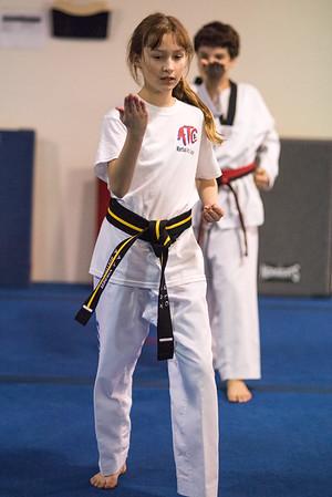 Taekwondo-4523