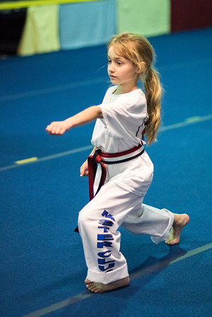 Taekwondo-4505