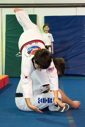 Taekwondo-4613