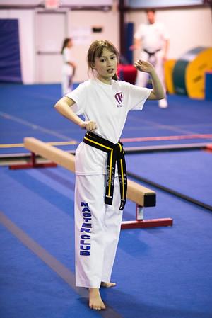 Taekwondo-4517