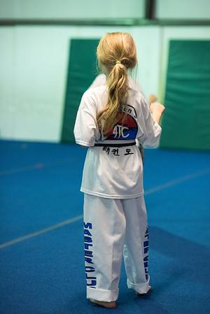 Taekwondo-4550