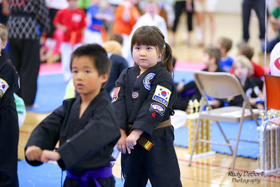 Taekwondo Festival photos by Rudy DeSort Photography