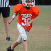 Talahi Tiger Football