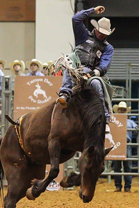 Tampa Bay Pro Rodeo-15
