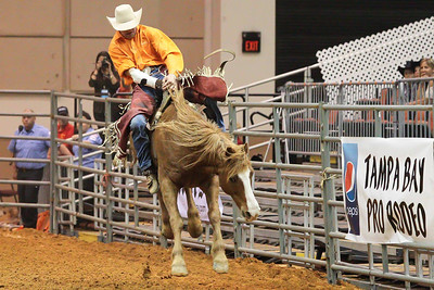 Tampa Bay Pro Rodeo-23