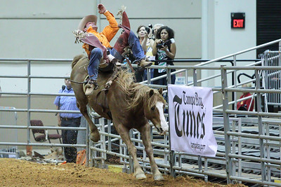 Tampa Bay Pro Rodeo-22