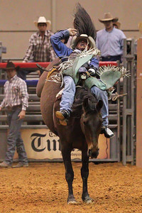 Tampa Bay Pro Rodeo-13