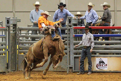 Tampa Bay Pro Rodeo-19