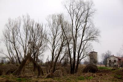 2010-03-21 at 11-54-26