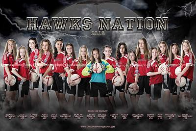 Hawks 2016 Poster copy