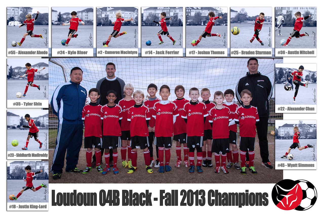 Loudoun 04B Black Poster - Fall 2013