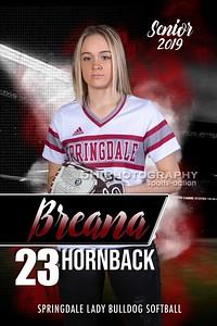 BreanaH2