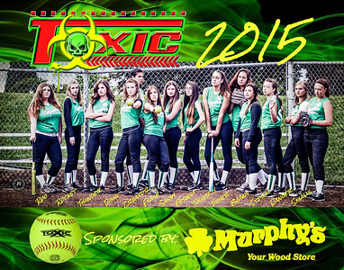 Team Toxic Poster 2015