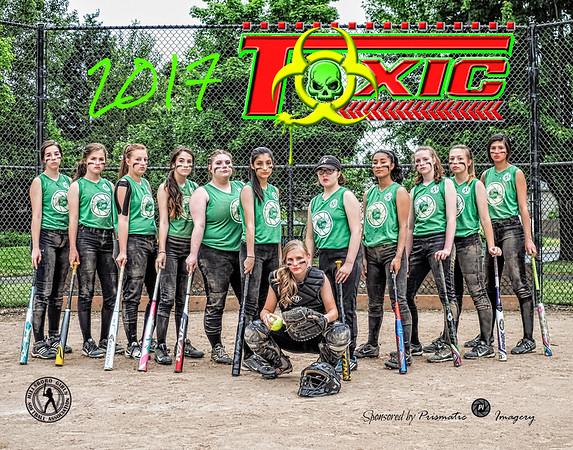 Team Toxic 2017
