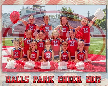 HCP Cheer 2017 2nd grade 8x10