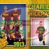 halls flag packers hickman