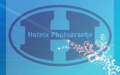 Music-flowers-on-blue-background-vector-design-wallpaper-and-photo