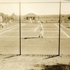 Tennis III (01265)